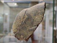 De oudste tekening van Nederland, is te zien in het Roerstreekmuseum